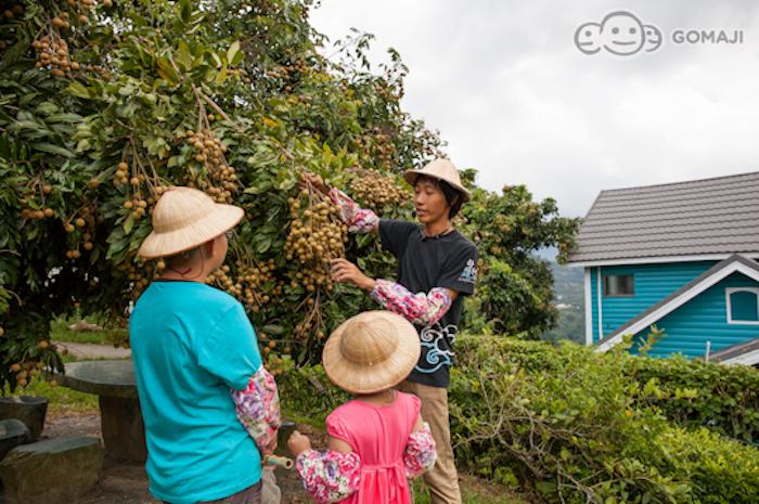 由專人帶領體驗當季的農作生產體驗