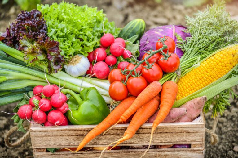 多吃抗氧化食物!七色蔬果避免糖化+氧化造成身體老化