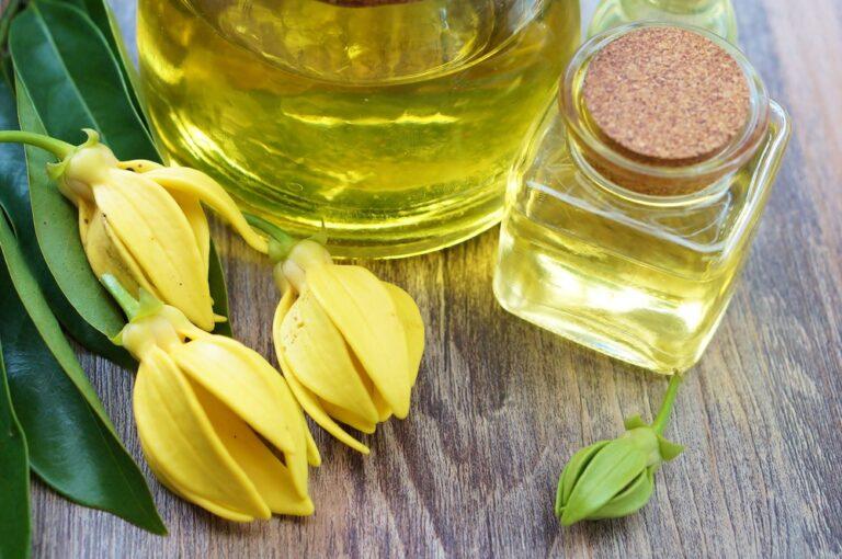 依蘭精油的功效與使用方法:保養護膚、抗菌還能催情