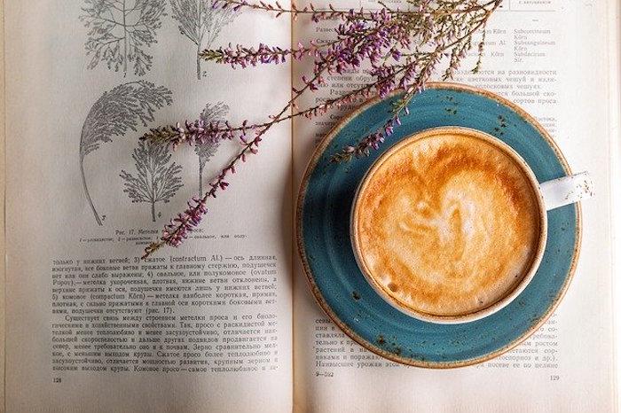林口咖啡廳|林口不只有Outlet,網美推薦私藏夢幻咖啡廳10選!