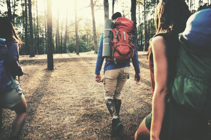 2020安心旅遊補助旅行團補助方案